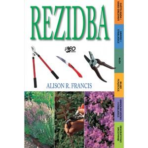 Rezidba